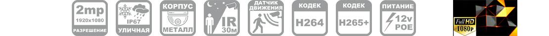 IP камера антивандальная с POE